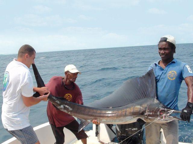 Madagaskar x 2 – 2011 – Wrociliśmy