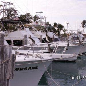 Floryda 2005 (24)