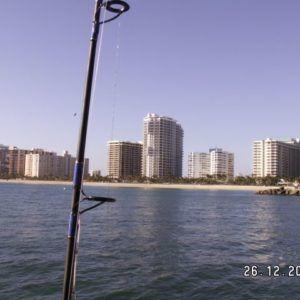 Floryda 2005 (7)
