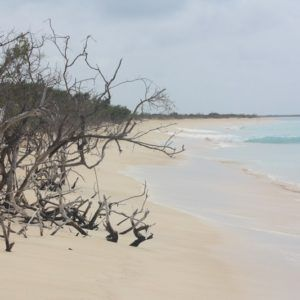 Karaiby 2012 (18)