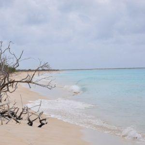Karaiby 2012 (5)