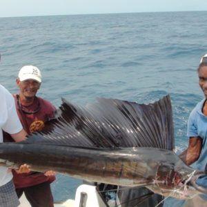 Madagaskar 2011 (9)