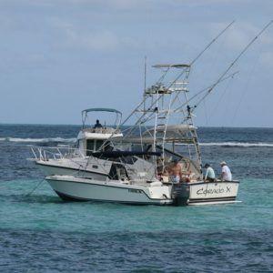 karaiby-2010-16