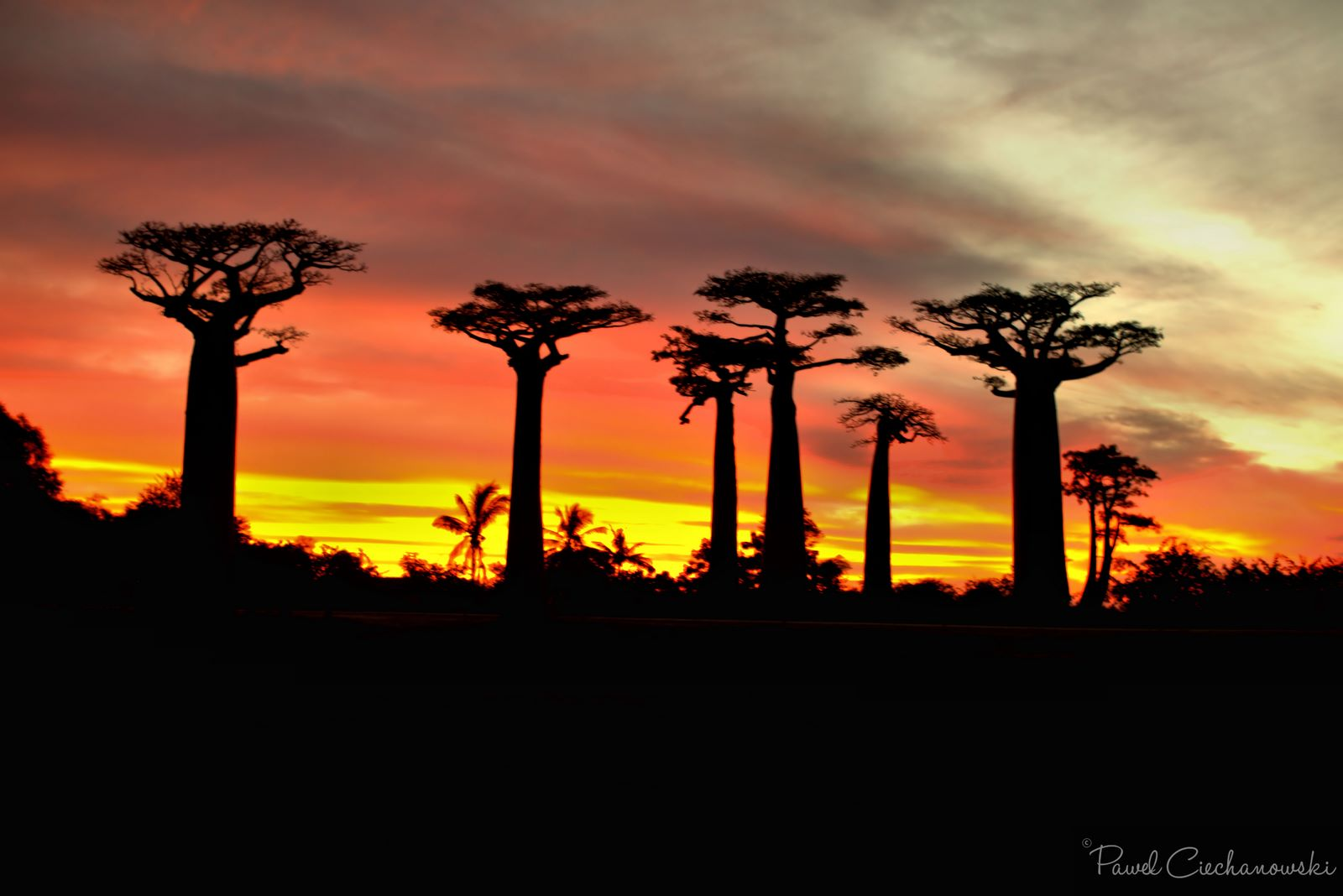 Mission Baobab Morondava – Completed