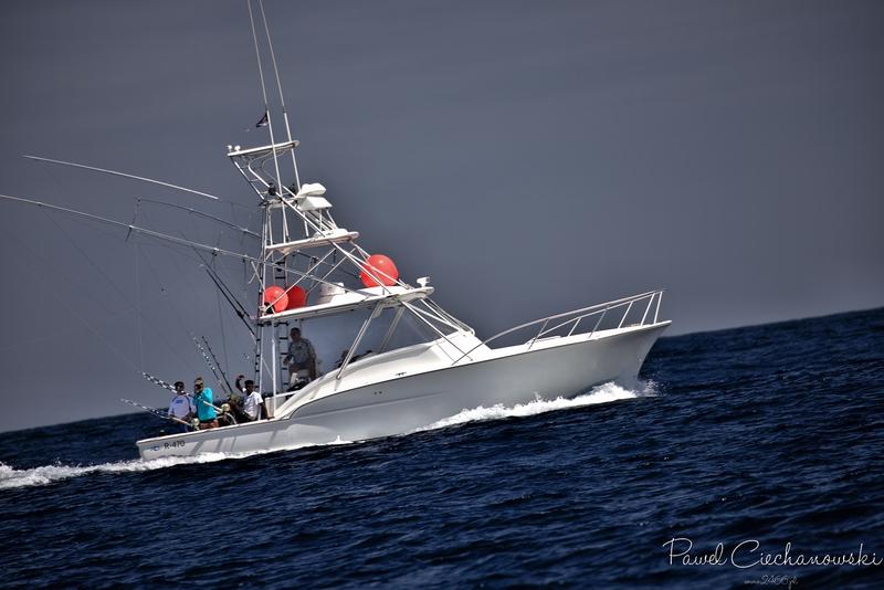GOMERA 2020 – Blue Marlin