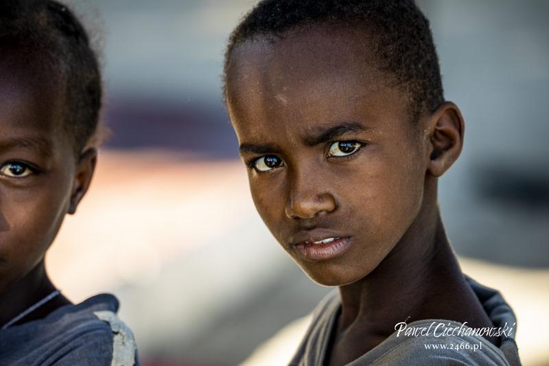 "PROJECT MADAGASCAR – MADAGASCAR ""55"""