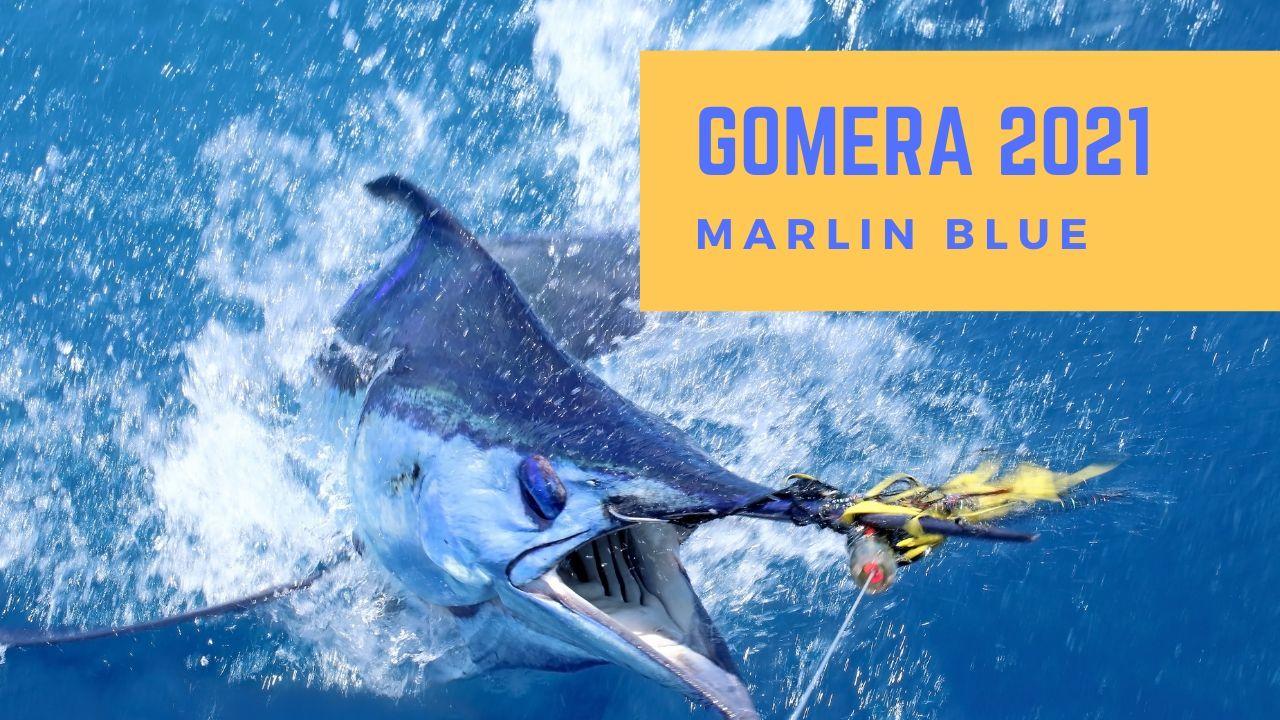 GOMERA – BLUE MARLIN 2021